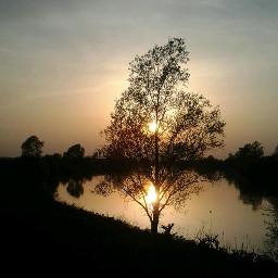 colorful walkingalone music evening sunset