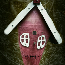 photography birdhouse caricature faces