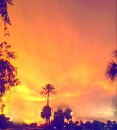 sunset photography sky florida nature