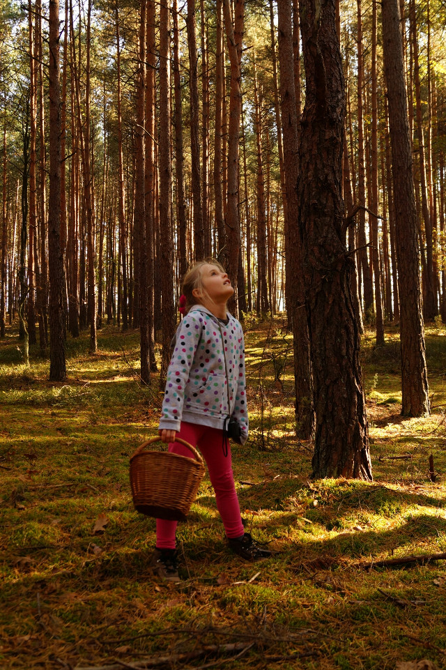 #baby #emotions #nature #people #waphappy   My sister in forest 😊😊