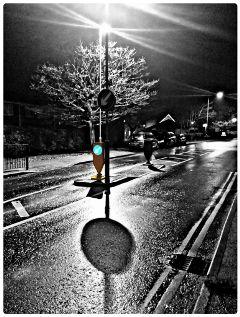 blackandwhite color hdr rain winter