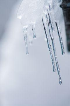 japan nature winter snow photography
