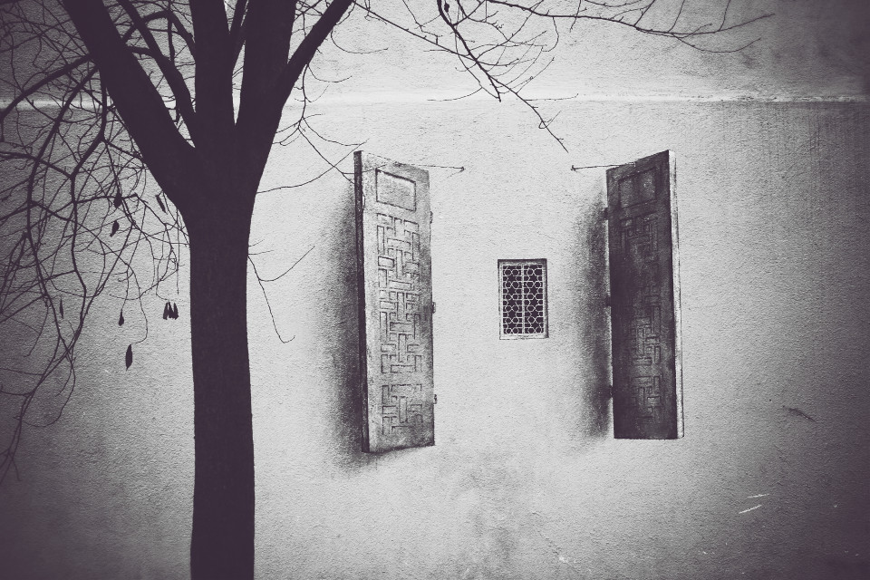 Street art (only the window :D) #photography #blackandwhite #streetart Week in review 19.01.2015 Thank you!